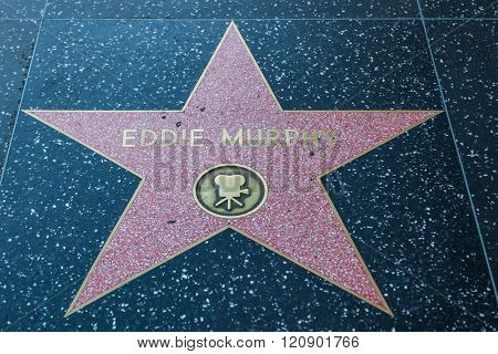 Eddie Murphy Hollywood Star