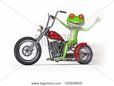 Frog on Motorcycle