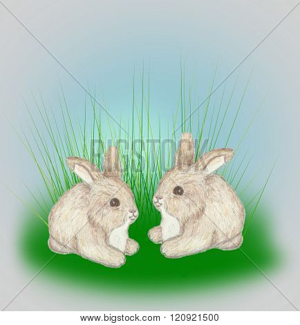 Two little bunnies nestled together in tall grass