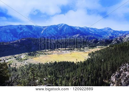 Pickel Meadow and River in Forest and Sierra Nevada Mountains