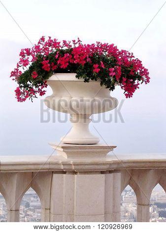 Haifa Vase With Flowers 2003