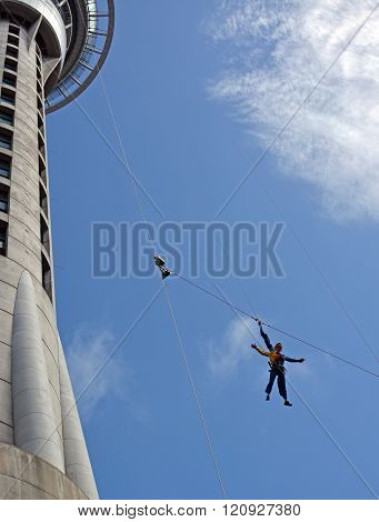 Woman Bungy Jumping From Auckland Sky Tower