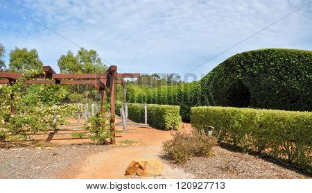 Arbor and Hedge Maze