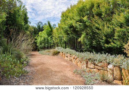 Limestone Path: Amaze'n Margaret River