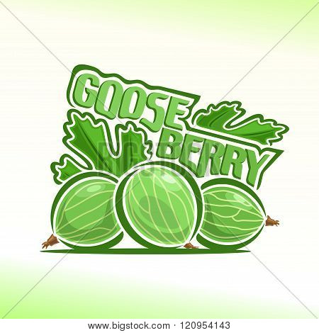Vector illustration on the theme of gooseberry