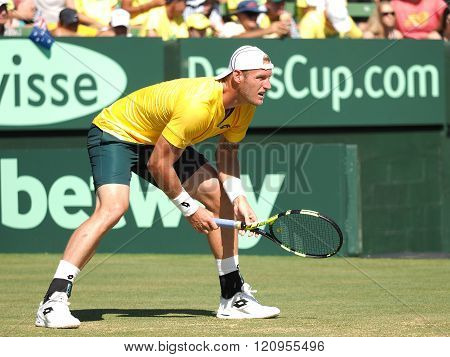 Sam Groth During Davis Cup Singles