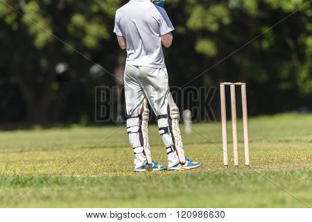 Cricket Batsman Action