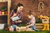 Cute child girl helps her mother to care for plants. Mother and her daughter engaged in gardening in the backyard. Spring concept, nature and care. poster