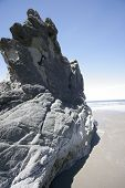 a rock that looks like a dinasaur found along the oregon coast. poster