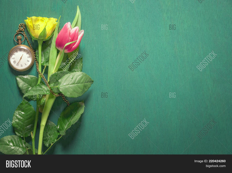 Yellow Pink Flowers Image Photo Free Trial Bigstock