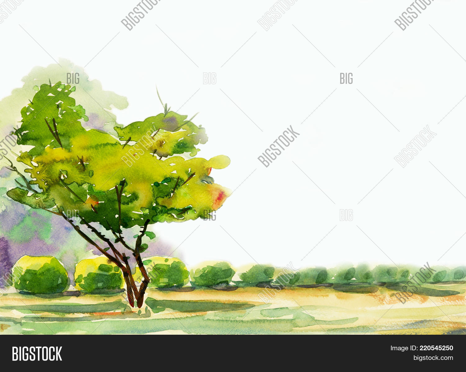 Abstract Watercolor Image & Photo (Free Trial)   Bigstock
