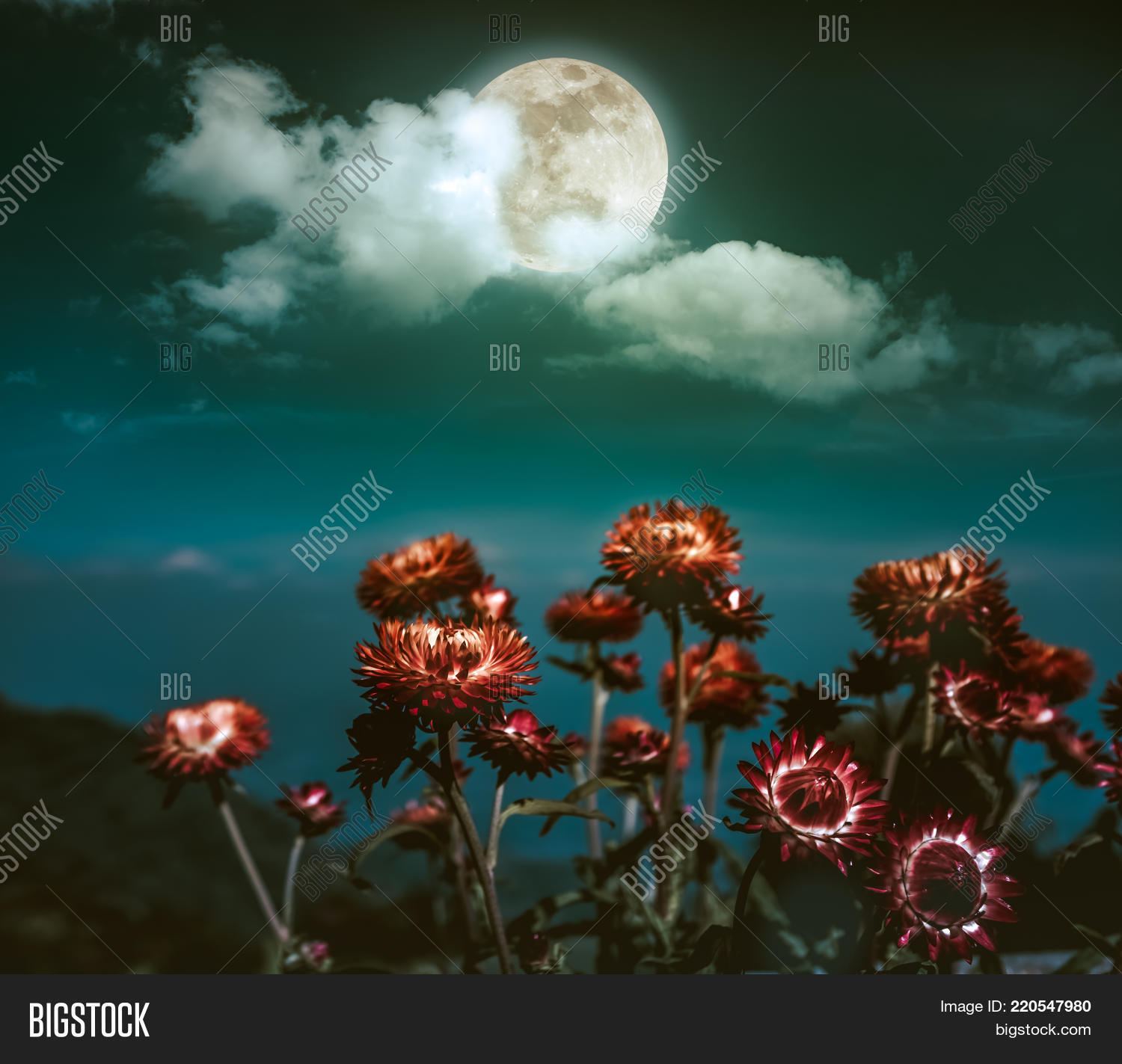 Beautiful night landscape dark image photo bigstock beautiful night landscape of dark emerald green sky with full moon behind clouds above dry straw izmirmasajfo