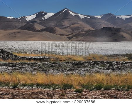 Autumn landscape in the mountains: to the fore a tall yellow sloping grass, white stripes of salty land, behind the high mountain peaks covered with glaciers.