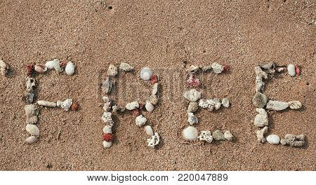 Word FREE made from sea shells on sandy summer beach. Concept background for sales