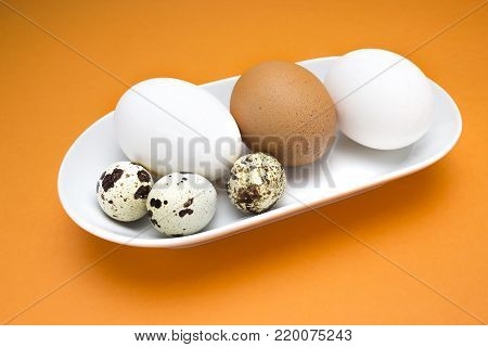 A photo of uncooked quail, chicken and hen white and beige eggs in white porcelain plate on the orange table. An overhead photo of quail eggs, colorful rustic background
