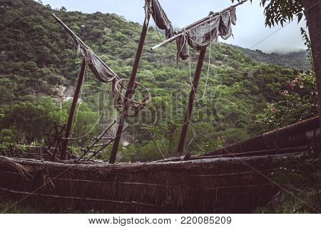Old pirate sailboat in the jungle.Wild red flowers. image for background use