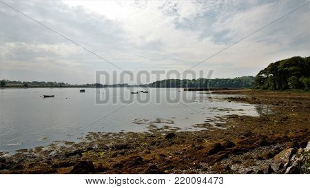 View onto Strangford Lough from the Castle Ward Forest Park in Northern Ireland
