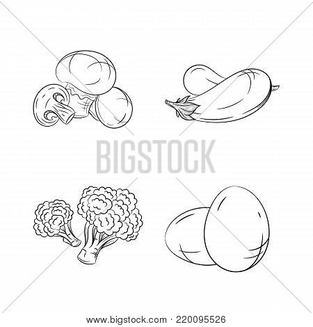 Collection set of hand drawn vegetables isolated on white background. Vector illustration of champignon, eggplant, broccoli and eggs in vintage sketch style - stock vector