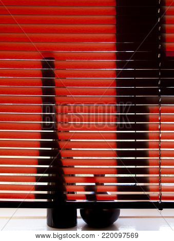 Venetian blind with vases on window sill backlit by the sun