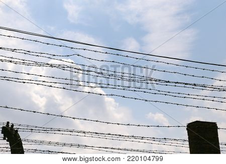 Barbed Wire Of An Electrified Border