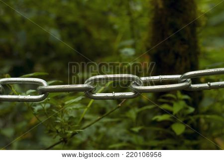 metal chain in the foreground - fencing of the pedestrian tourist route - separating the viewer from the green nature in the form of a blurred background