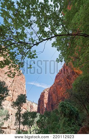 Canyon in the state of Utah southwest of the United States. Impressive rock formations and deep gorges engraved and shaped by the strength of the waters of the river.