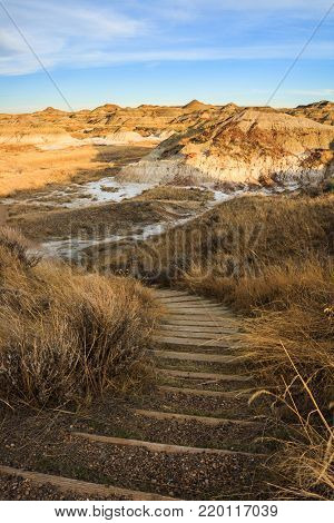 A trail anong the badlands in Dinosaur Provincial Park, Alberta, Canada