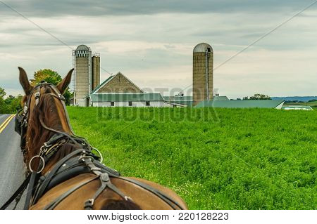 Amish country farm field agriculture and hoses in Lancaster, PA US