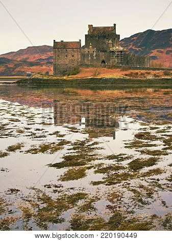Tides in the lake at Eilean Donan Castle, Scotland. The popular stony bridge over the remnants of water with massive tufts of water algae. Poor light with low cloud.