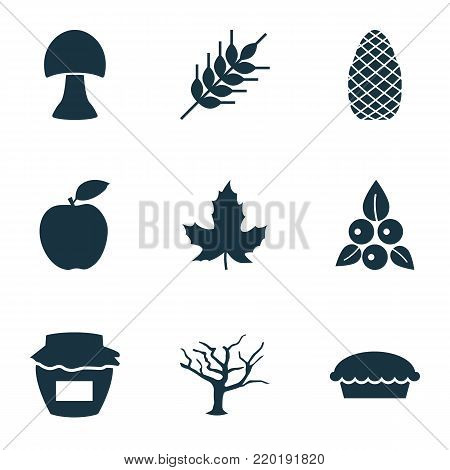 Autumn icons set with jar, grain, champignon and other grain elements. Isolated vector illustration autumn icons.
