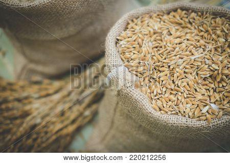 Brown Grain Rice In Burlap Sack Bag