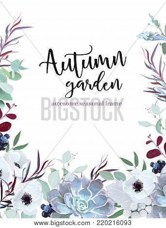 Autumn plants vector design frame arranged from anemone, eucalyptus, agonis, echeveria succulent, silverberry, brunia and black berries, mixed herbs. Banner or border. All leaves are not cut. Editable