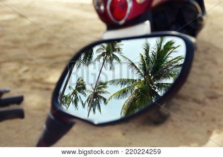 Palm trees in the motorbike mirror. Motorbike tropical trip.