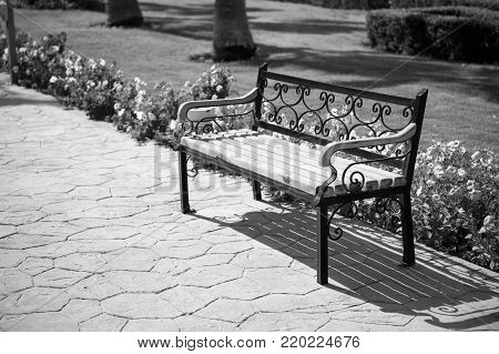 empty wooden bench on pavers road near green grass and summer or spring beautiful flowers in park or garden sunny outdoor on natural background. furniture and exterior. relax and privacy, solitude
