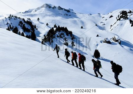 mountaineers who walk towards snowy mountains & mountaineeering team;hikers