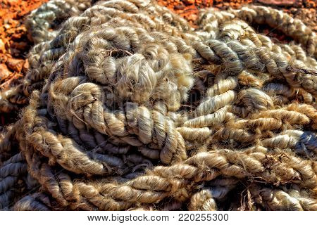 Old thick rope with tied knots rolled on the ground. Thick is unwound from the time the rope lies on the red clay soil. Tinted