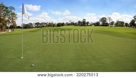 Lush green grass on a golf course with a path for a golf cart, trees and a flag