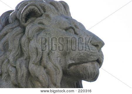 Lion Statue Detail