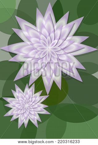 Waterlily background with big and small flower on circle green leaves, copy space for own message. Beautiful natural background, Vector EPS 10