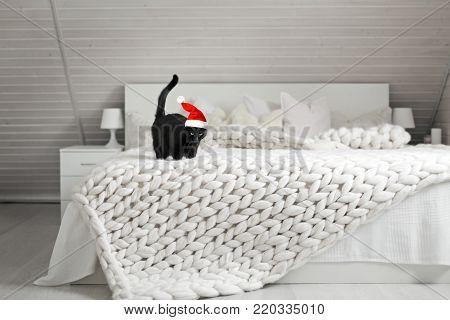 Christmas celebration at cozy white scandinavian bedroom interior. Beautiful merino woolen plaid decorated bed and floor, black cat wearing santa helper hat enjoying warm soft knit blanket.
