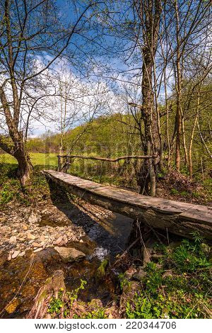 wooden bridge through forest stream. beautiful nature scenery in springtime