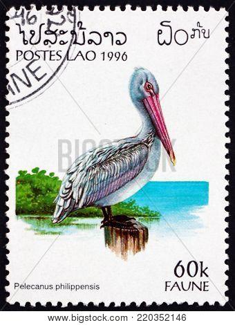 LAOS - CIRCA 1996: a stamp printed in Laos shows spot-billed pelican, pelecanus philippensis, bird, circa 1996