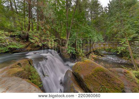 Beside the waterfall in Whatcom Falls Park in Bellingham Washington State