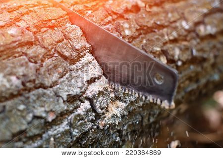 Hand hacksaw on wooden wood cutting on natural blurred background