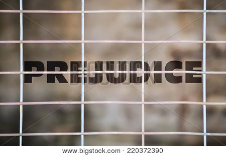 Word Prejudice written under a wire mesh on blurred background