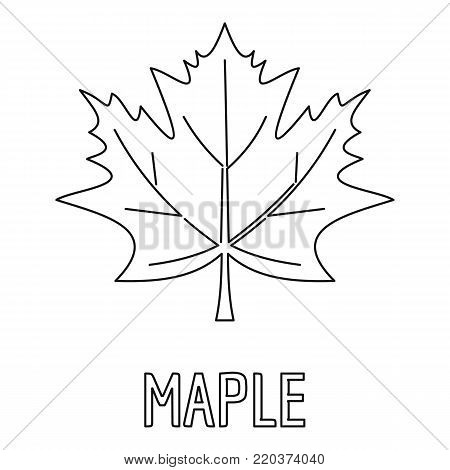 Maple leaf icon. Outline illustration of maple leaf vector icon for web