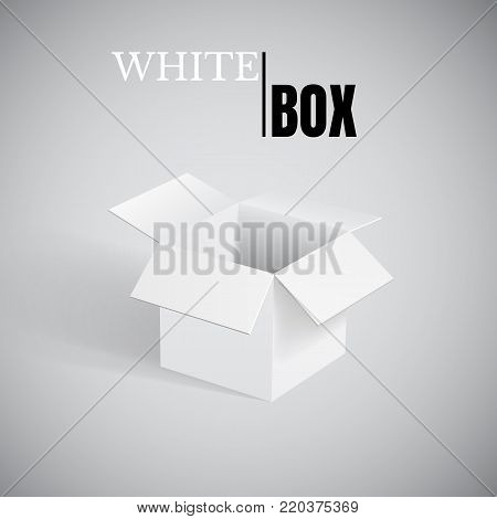 Open box, white empty cardboard, vector container.