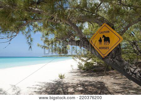 The warning beach sign on otherwise uninhabited island Half Moon Cay (Bahamas).