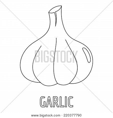 Garlic icon. Outline illustration of garlic vector icon for web