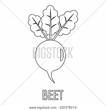 Beet icon. Outline illustration of beet vector icon for web